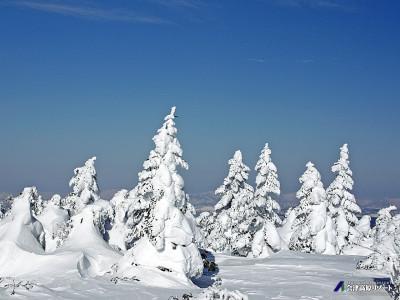 樹氷 たかつえ